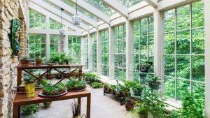 Зимний сад: типы и особенности возведения-Витраж СПб